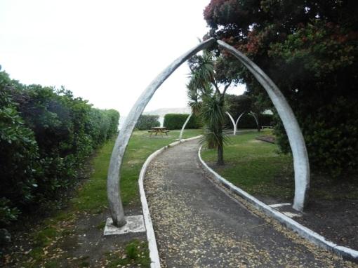 Whalebones in a Kaikoura park