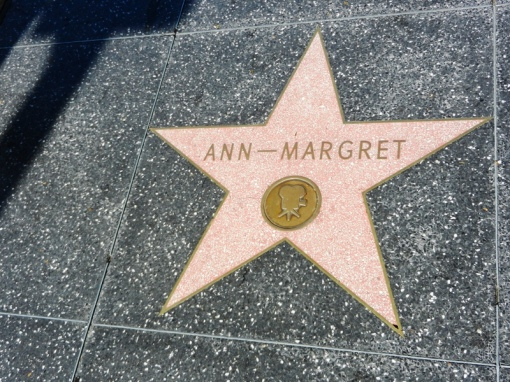 Ann-Margret is one of the handful of Swedes that has a star on the boulevard