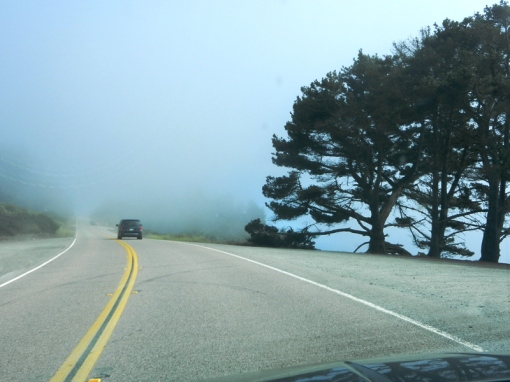 A foggy start to our drive on Highway 1
