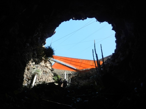 Looking up from inside the lava tube at Jameos del Agua