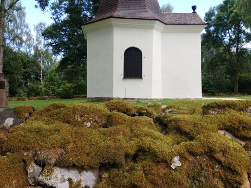 A fantastic mossy wall all round the Apertin chapel.