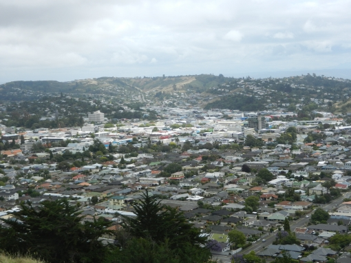 Nelson as seen from Neale-Park-View
