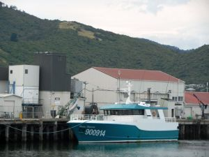 Greymouth harbour activity
