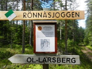 Ol-Larsberget - the site of the nearest earthcache