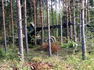 Forest harvester